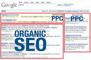Professional Search Engine Optimization, SEO vs PPC